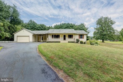 10378 Kentucky Springs Road, Mineral, VA 23117 - #: VALA119732