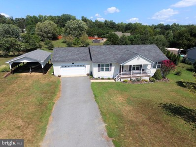 46 Mountain View, Mineral, VA 23117 - #: VALA119754