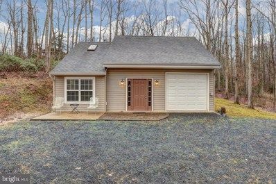 115 Beaver Pond Way, Mineral, VA 23117 - #: VALA120326