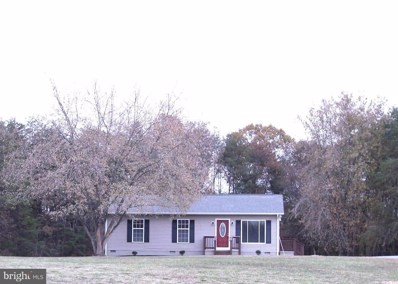 1764 Mount Pleasant Church Road, Mineral, VA 23117 - #: VALA120384