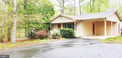 196 Mitchell Point Road, Mineral, VA 23117 - #: VALA121024
