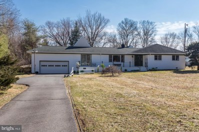 19580 Youngs Cliff Road, Sterling, VA 20165 - #: VALO100868