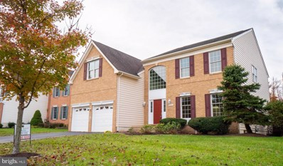 20061 Blackwolf Run Place, Ashburn, VA 20147 - #: VALO101564