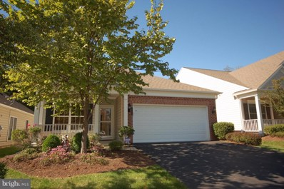 20423 Old Grey Place, Ashburn, VA 20147 - #: VALO101656