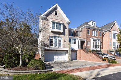 43468 Castle Harbour Terrace, Leesburg, VA 20176 - #: VALO268186