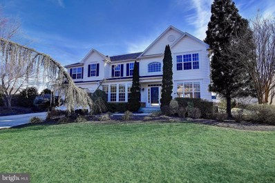 25804 Spring Farm Circle, Chantilly, VA 20152 - #: VALO268234
