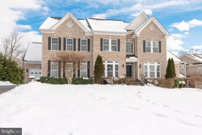 21584 Burnt Hickory Court, Broadlands, VA 20148 - #: VALO268882