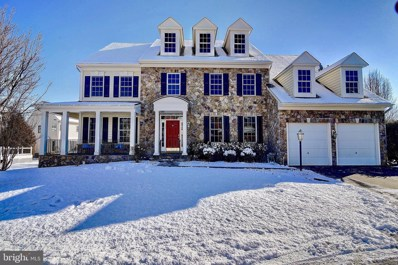 44181 Riverpoint Drive, Leesburg, VA 20176 - #: VALO314866
