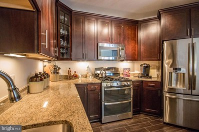 43145 Sunderland Terrace UNIT 306, Broadlands, VA 20148 - MLS#: VALO352884