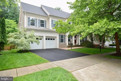 43981 Riverpoint Drive, Leesburg, VA 20176 - #: VALO353142
