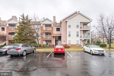 20960 Timber Ridge Terrace UNIT 303, Ashburn, VA 20147 - #: VALO353238