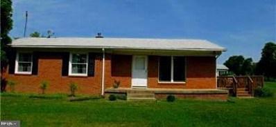 40818 Red Hill Road, Leesburg, VA 20175 - #: VALO353300