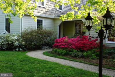 23443 Melmore Place, Middleburg, VA 20117 - #: VALO355324