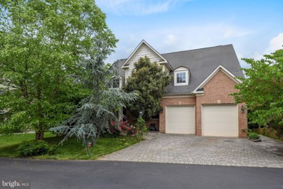43884 Riverpoint Drive, Leesburg, VA 20176 - #: VALO355848