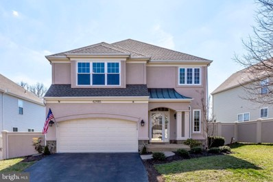 42985 Hedgeapple Court, Ashburn, VA 20147 - #: VALO356192