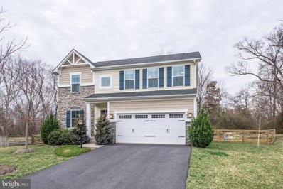 41950 Cedar Point Place, Aldie, VA 20105 - #: VALO379232