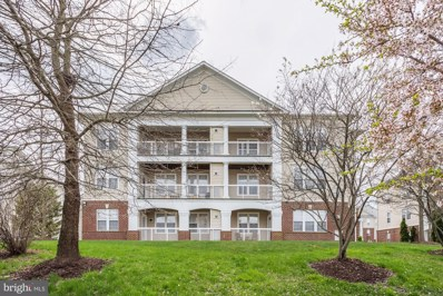 22668 Blue Elder Terrace UNIT 301, Ashburn, VA 20148 - #: VALO379876