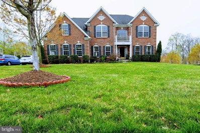 22578 Forest View Court, Ashburn, VA 20148 - #: VALO381074