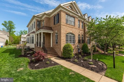 43598 Canal Ford Terrace, Leesburg, VA 20176 - #: VALO381886