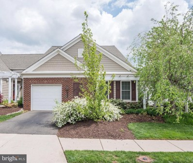 44504 Maltese Falcon Square, Ashburn, VA 20147 - #: VALO382016