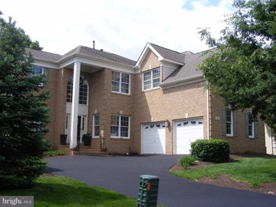 19841 Bethpage Court, Ashburn, VA 20147 - #: VALO383806