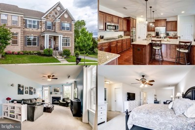 41718 Deer Grass Terrace, Aldie, VA 20105 - #: VALO383916