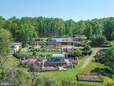 19238 Blueridge Mountain Road, Bluemont, VA 20135 - #: VALO384444
