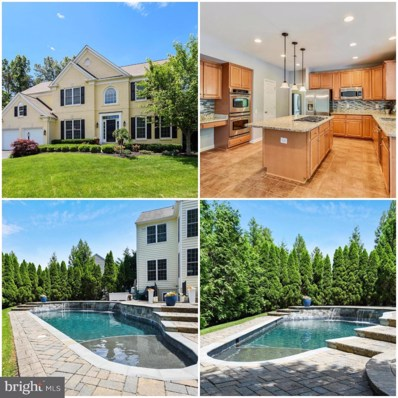 43860 Piney Stream Court, Chantilly, VA 20152 - #: VALO384560