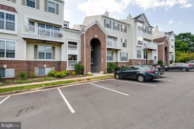 46893 Eaton Terrace UNIT 101, Sterling, VA 20164 - #: VALO387306