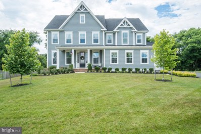 24383 Virginia Gold Lane, Aldie, VA 20105 - #: VALO387350