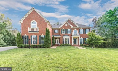 22503 Pine Top Court, Ashburn, VA 20148 - MLS#: VALO387974