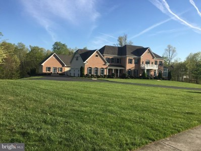 42929 Cedar Ridge Boulevard, Chantilly, VA 20152 - #: VALO389488