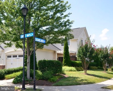 44392 Sunset Maple Drive, Ashburn, VA 20147 - #: VALO390880