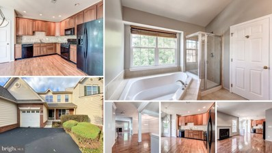 43214 Somerset Hills Terrace, Ashburn, VA 20147 - #: VALO391250
