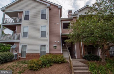 20958 Timber Ridge Terrace UNIT 104, Ashburn, VA 20147 - #: VALO392000