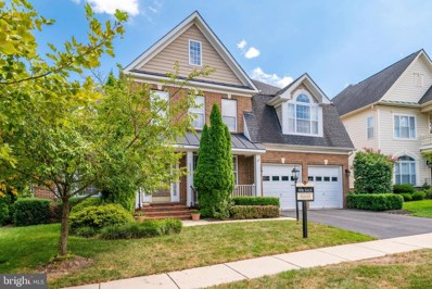 43817 Riverpoint Drive, Leesburg, VA 20176 - #: VALO392596