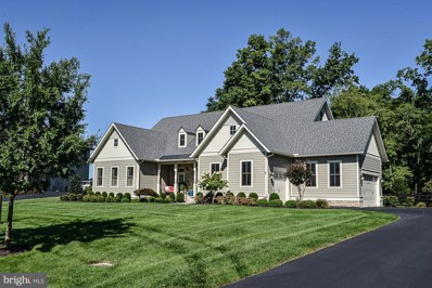 23059 Welbourne Walk Court, Ashburn, VA 20148 - #: VALO393028