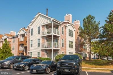 20979 Timber Ridge Terrace UNIT 303, Ashburn, VA 20147 - #: VALO393038