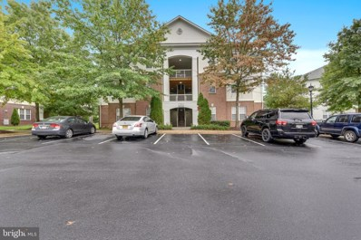 22641 Blue Elder UNIT 201, Ashburn, VA 20148 - #: VALO393096