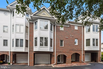 133 Chesterfield Place SW, Leesburg, VA 20175 - #: VALO393132