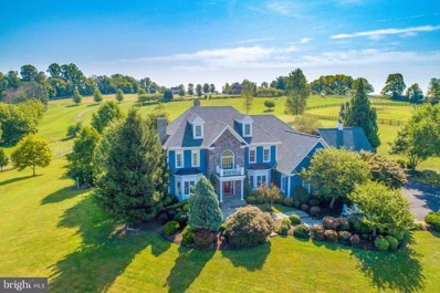 16080 Gold Cup Lane, Paeonian Springs, VA 20129 - #: VALO393286