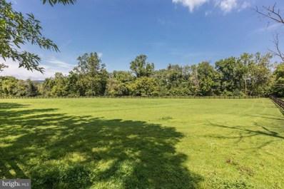 19312 Walsh Farm Lane, Bluemont, VA 20135 - #: VALO393312