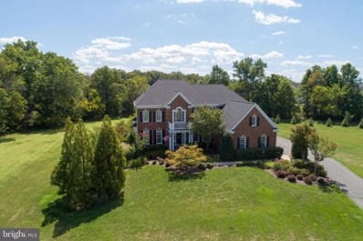 16799 Chestnut Overlook Drive, Purcellville, VA 20132 - #: VALO393570