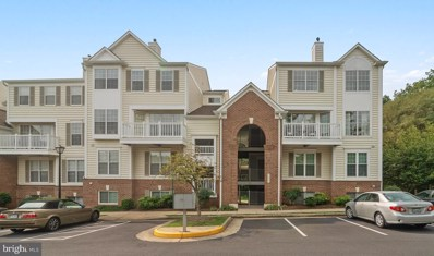 46891 Eaton Terrace UNIT 300, Sterling, VA 20164 - #: VALO393834