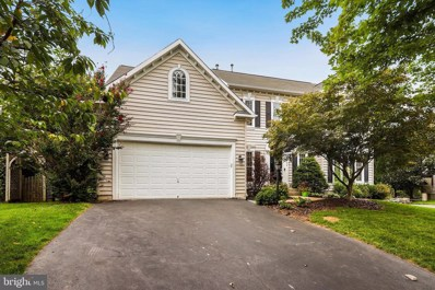 43392 Deepspring Court, Ashburn, VA 20147 - #: VALO394182