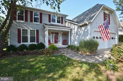 20769 Riverbirch Place, Sterling, VA 20165 - #: VALO394760