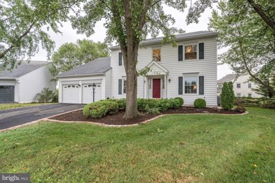 20666 Stillpond Court, Ashburn, VA 20147 - #: VALO394824