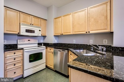 19365 Cypress Ridge Terrace UNIT 418, Leesburg, VA 20176 - #: VALO394934