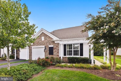 20824 Adams Mill Place, Ashburn, VA 20147 - #: VALO394976