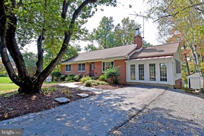 17439 Lakefield Road, Round Hill, VA 20141 - #: VALO395000